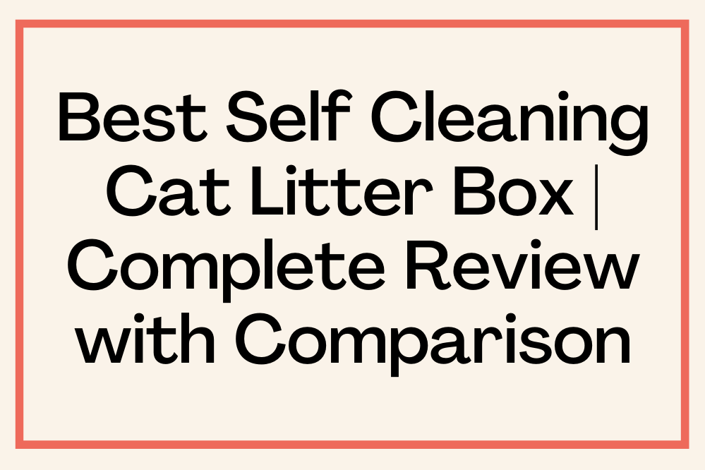Best Self-Cleaning Cat Litter