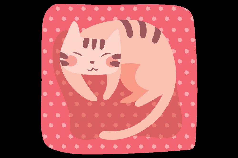 cat bed image